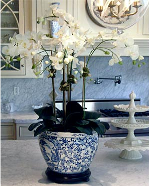 blue-and-white-cararra-marble-kitchen-orchid-planter